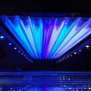 3x Coral Plus, 3x Blue Plus, 1x Actinic, 1x Purple Plus. Alles ATI